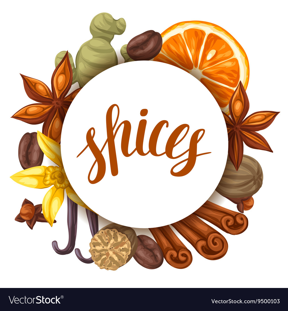 Background design with various spices vector