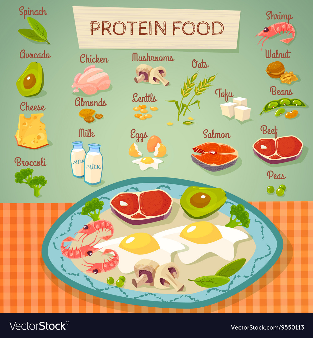 Protein food raw and cooked collection vector