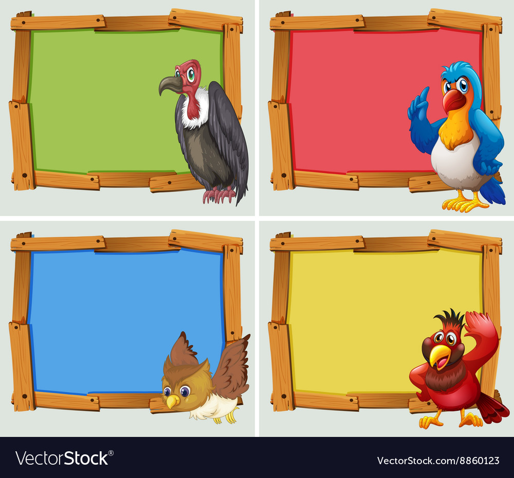 Frame design and wild birds vector