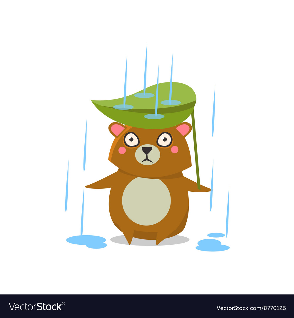 Brown bear under rain vector