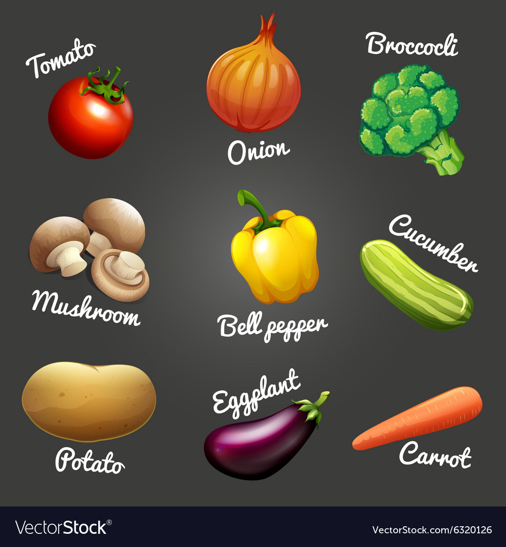 Fresh vegetables with names vector