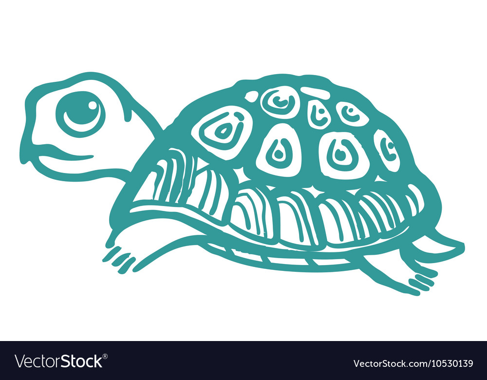 Turtle hand drawn vector