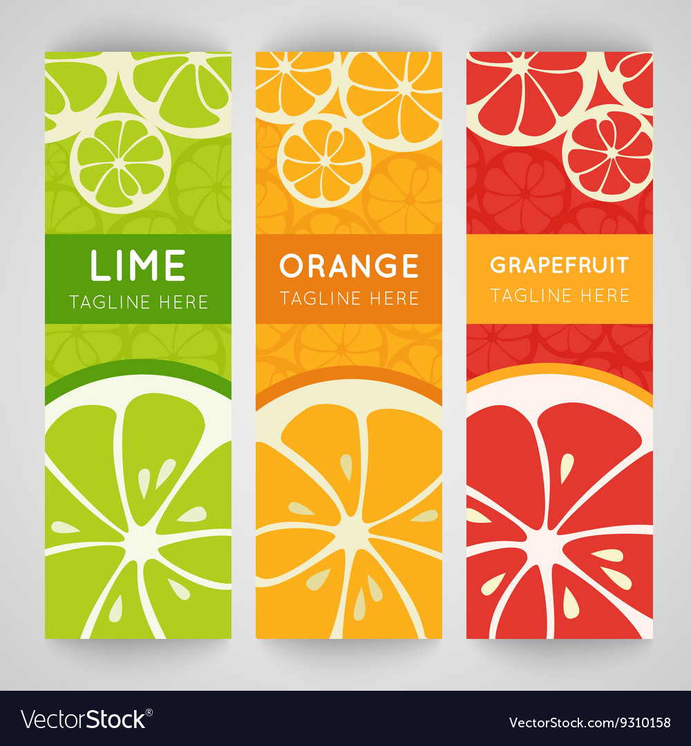 Three bright banner with stylized citrus fruit and vector
