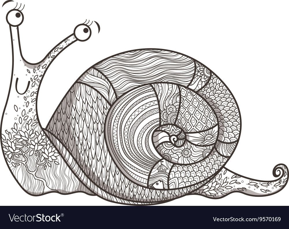 Drawing of a snail in a variety of fun vector