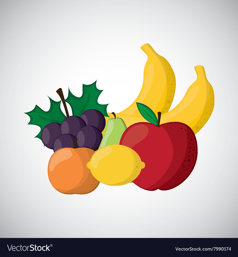 Fruits icon design vector