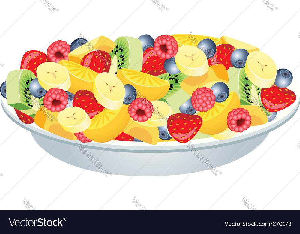 Fruit salad vector