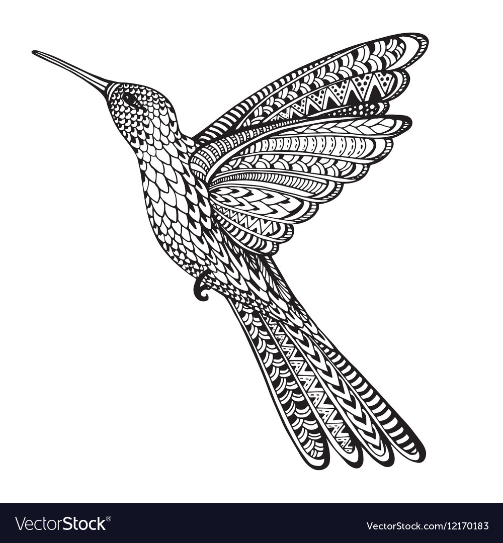 Hand drawn abstract flying colibri in ornate vector