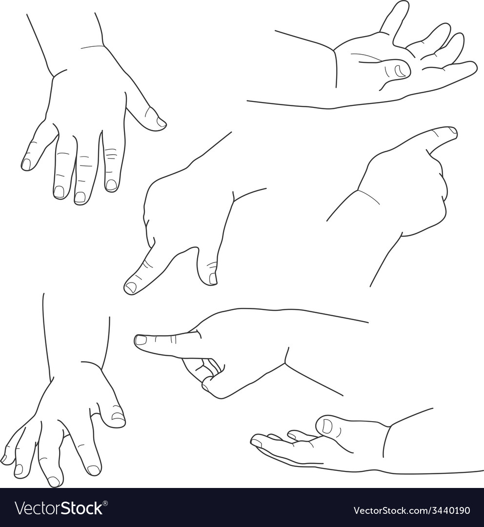 Baby hand different gestures vector