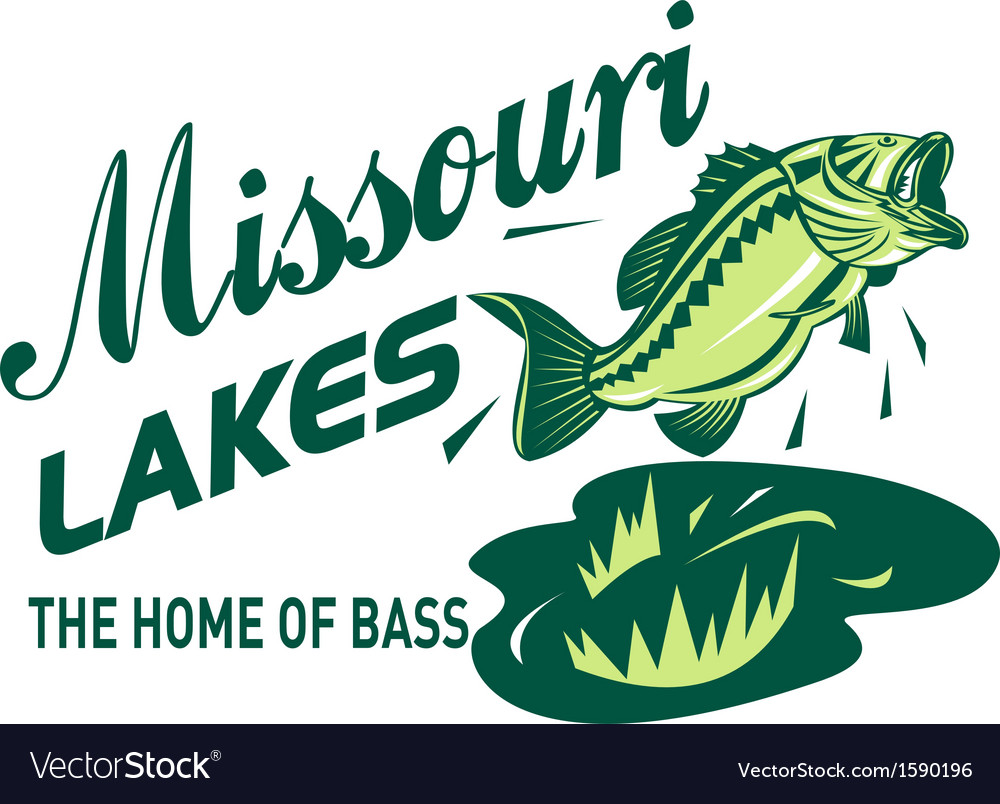 Largemouth bass missouri lakes vector