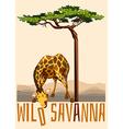 Wild Savanna theme with giraffe and tree vector image
