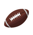 brown leather ball for american football isolated vector image