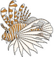 Color lionfish vector image