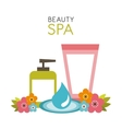 beauty spa design vector image