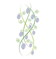 Doodle color abstract handdrawn vine grape vector image