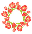 tulips wreath vector image