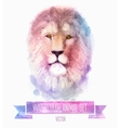 set of watercolor  Cute lion vector image