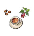 beans cup of coffee coffee tree branch vector image