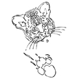 Leopard puma or jaguar face with print of paw vector image