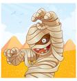 mummy cartoon vector image vector image
