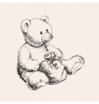 Hand drawn bear toy vector image vector image