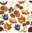 Nut bean seed grain seamless pattern background vector image