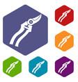 garden shears icons set vector image