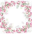 Square frame with contour sweet peas and herbs on vector image vector image