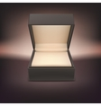 Product gift jewelry box vector image