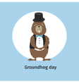 Greeting card Groundhog Day vector image