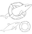 with a dolphin and a life buoy vector image