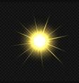 golden star burst vector image vector image