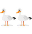 funny cute seagull vector image