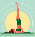 girl in yoga shoulderstand pose or sarvangasana vector image