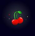 cherry concept flat cherry vector image
