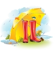 Gumboots under umbrella vector image