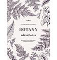 Botanical with leaves Boxwood vector image