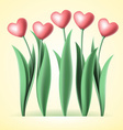 heart tulips vector image
