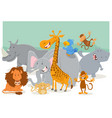 safari animal characters group vector image