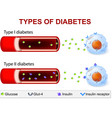 Diabetes Type 1 and Type 2 vector image vector image