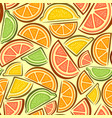 seamless pattern citrus slices vector image