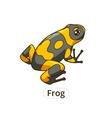 Frog cartoon vector image