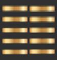 set of vintage gold ornamental borders vector image
