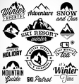 Winter Sports Badges and Labels vector image