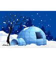 Nature scene with igloo on snowy night vector image vector image