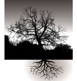A Tree with Roots Landscape vector image vector image