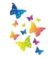 color butterflies vector image