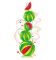 watermelons vector image vector image