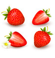 a set of fresh strawberry vector image