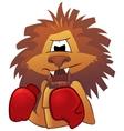 Lion boxer vector image