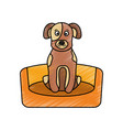 dog sitting in the bed pet animal vector image